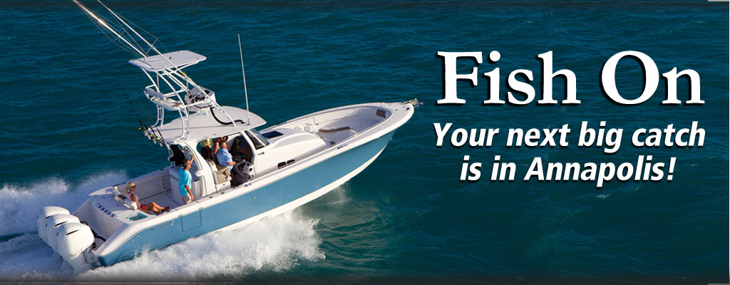 Fishing boats from 50 manufacturers annapolis boat shows for Fishing boat manufacturers